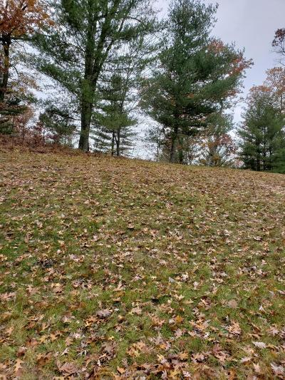 Newaygo Residential Lots & Land For Sale: 5148 E Manitou Way #28