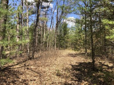 Benzie County, Charlevoix County, Clare County, Emmet County, Grand Traverse County, Kalkaska County, Lake County, Leelanau County, Manistee County, Mason County, Missaukee County, Osceola County, Roscommon County, Wexford County Residential Lots & Land For Sale: 2174 W 36th Street
