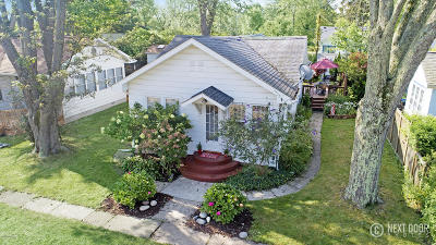 South Haven Single Family Home For Sale: 7268 Lincoln Street