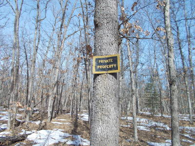 Benzie County, Charlevoix County, Clare County, Emmet County, Grand Traverse County, Kalkaska County, Lake County, Leelanau County, Manistee County, Mason County, Missaukee County, Osceola County, Roscommon County, Wexford County Residential Lots & Land For Sale: N N Stark Road