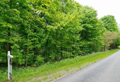 Kalamazoo County Residential Lots & Land For Sale: W P Avenue