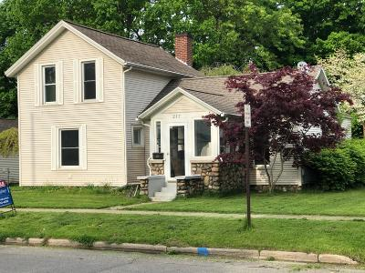Hastings Single Family Home For Sale: 217 S Hanover Street