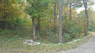 Allegan Residential Lots & Land For Sale: 1952 16th Street