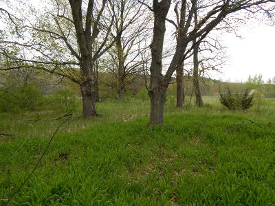 Residential Lots & Land For Sale: Lakeview Drive #Unit 22