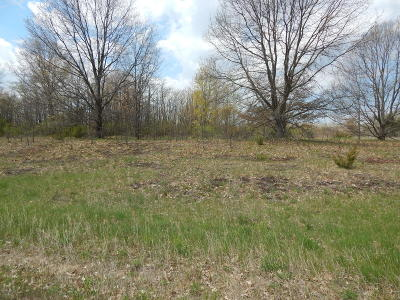 Oceana County Residential Lots & Land For Sale: Lakeview Drive #Unit 2 &