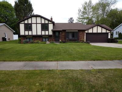 Big Rapids Single Family Home For Sale: 708 Novak