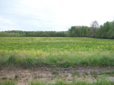 Clinton County, Gratiot County, Isabella County, Kent County, Mecosta County, Montcalm County, Muskegon County, Newaygo County, Oceana County, Ottawa County, Ionia County, Ingham County, Eaton County, Barry County, Allegan County Residential Lots & Land For Sale: 28th Street
