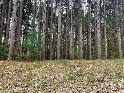 Oceana County Residential Lots & Land For Sale: 2410 S 36th Avenue