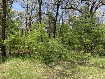 Muskegon County Residential Lots & Land For Sale: Vl Automobile Road #Lot E