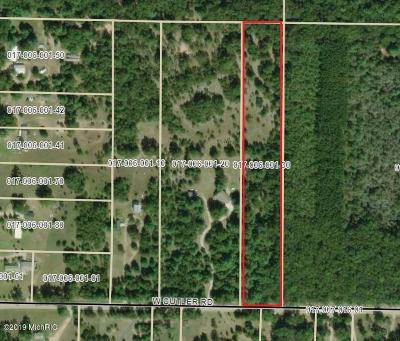 Newaygo Residential Lots & Land For Sale: 23850 Cutler Road