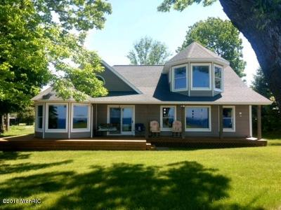 Ludington Single Family Home For Sale: 1695 S Speer