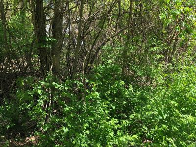 Berrien County Residential Lots & Land For Sale: 16260 Stones Throw Lane