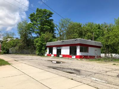 Hillsdale County Commercial For Sale: 122 W Chicago Street