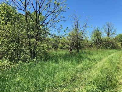 Van Buren County Residential Lots & Land For Sale: 54520 Cr 37