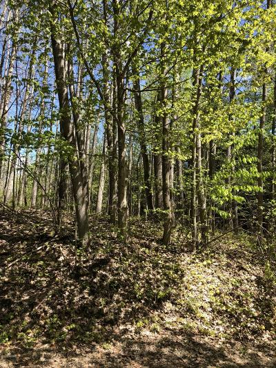 Benzie County, Charlevoix County, Clare County, Emmet County, Grand Traverse County, Kalkaska County, Lake County, Leelanau County, Manistee County, Mason County, Missaukee County, Osceola County, Roscommon County, Wexford County Residential Lots & Land For Sale: Vl W. Freeman Rd.