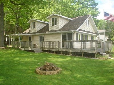 Newaygo Single Family Home For Sale: 9264 Redwood Drive