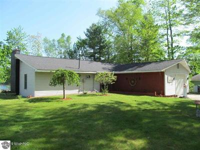 Benzie County, Charlevoix County, Clare County, Emmet County, Grand Traverse County, Kalkaska County, Lake County, Leelanau County, Manistee County, Mason County, Missaukee County, Osceola County, Roscommon County, Wexford County Single Family Home For Sale: 9102 Oak Lane