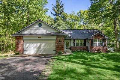 Allegan County Single Family Home For Sale: 4098 Sandy Ridge Court