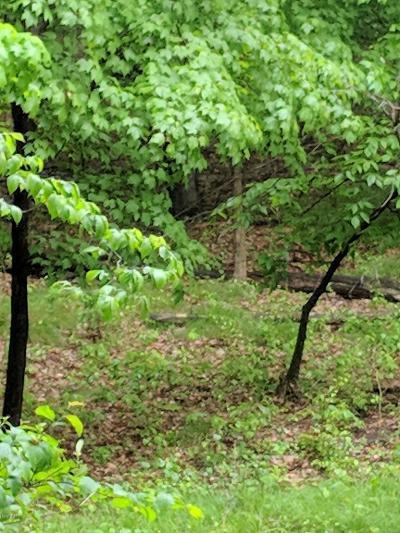 Bridgman Residential Lots & Land For Sale: Lot 2 Wildwood Drive