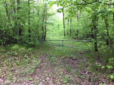 Cedar Springs Residential Lots & Land For Sale: 733 Solon Street NE