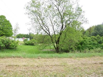 Evart Residential Lots & Land For Sale: Lot 22 Ridge Road