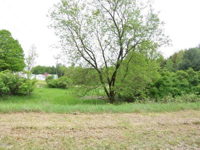 Evart Residential Lots & Land For Sale: Lot 25 Ridge Road
