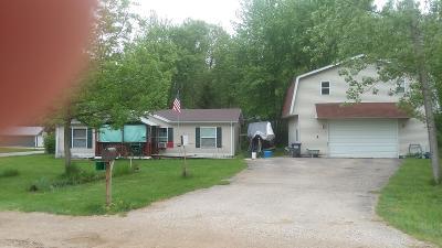 Allegan County Single Family Home For Sale: 54 Lincoln Avenue