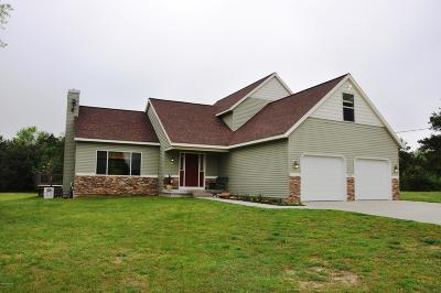 Kent City Single Family Home For Sale: 955 16 Mile Road