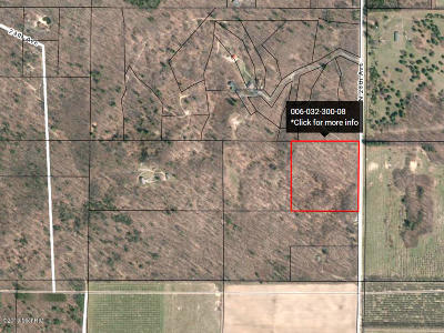 Oceana County Residential Lots & Land For Sale: 28th Avenue