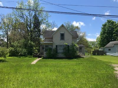Dowagiac Single Family Home For Sale: 307 Pokagon Street