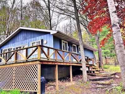 Evart Single Family Home For Sale: 637 Negaunee Lake Drive