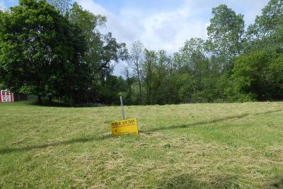 Calhoun County Residential Lots & Land For Sale: 907 Verona Road