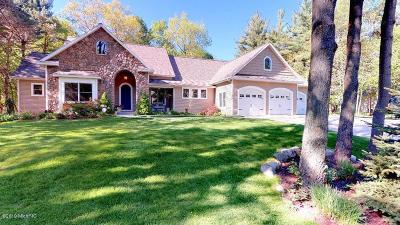 Holland, West Olive, Zeeland Single Family Home For Sale: 17201 Hiawatha Circle