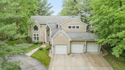 Spring Lake Single Family Home For Sale: 18887 N Fruitport Road