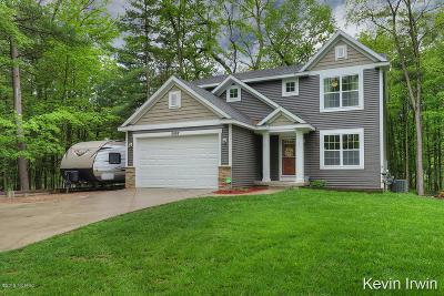 Rockford Single Family Home For Sale: 11887 Wabasis Avenue NE