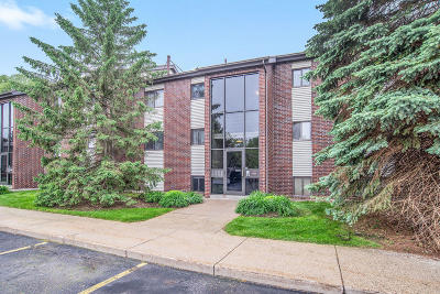 Grand Rapids MI Condo/Townhouse For Sale: $115,000