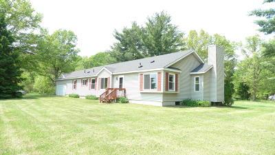 Howard City Single Family Home For Sale: 18186 W Howard City - Edmore #M-46