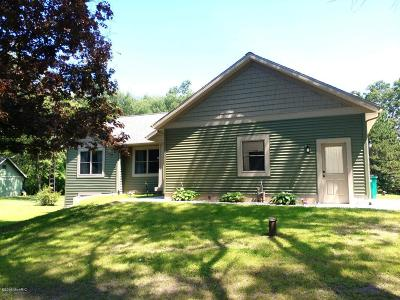 Howard City Single Family Home For Sale: 8664 Arborgast Road