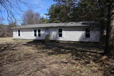Newaygo Single Family Home For Sale: 6317 E 76th Street