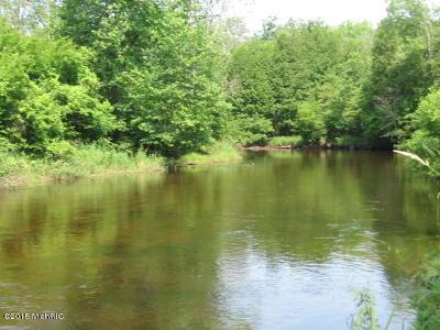 Oceana County Residential Lots & Land For Sale: 8965 N Water Wonderland Court