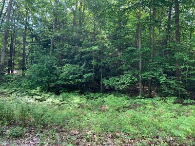Oceana County Residential Lots & Land For Sale: 8580 Awayin Drive