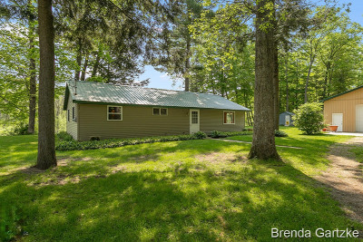 Newaygo Single Family Home For Sale: 7966 Main Street