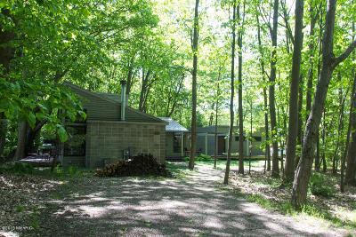 Saugatuck, Douglas Single Family Home For Sale: 569 Weirich Drive