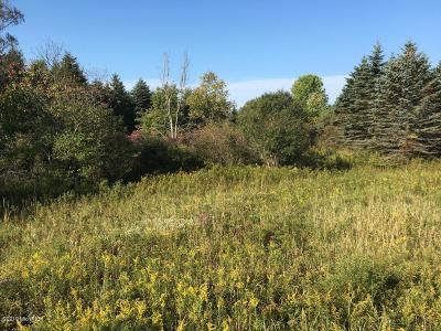 Reed City Residential Lots & Land For Sale: 00 Chestnut St