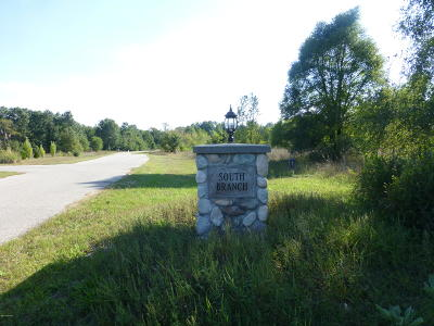 Oceana County Residential Lots & Land For Sale: S South Branch Lane #24 & 25