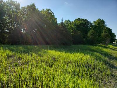 Middleville Residential Lots & Land For Sale: 5495 N M-37 Highway