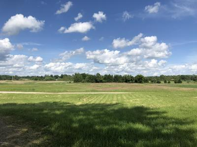Hillsdale County Residential Lots & Land For Sale: 8551 E Bacon Road