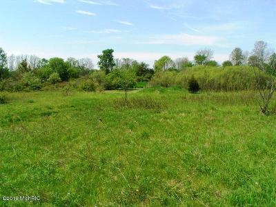 Ionia County Residential Lots & Land For Sale: 4315 Sayles Parcel A