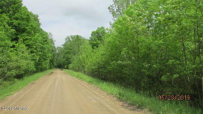 Hillsdale County Residential Lots & Land For Sale: 4587 Wynnewood Drive