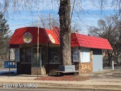 Big Rapids Commercial For Sale: 250 N State Street